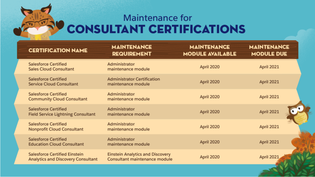 Consultant Certification Maintenance